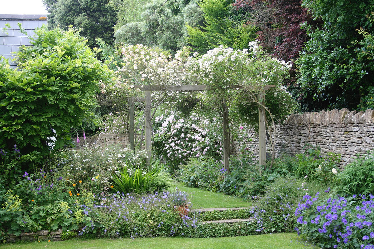 Climbing roses over the wooden arch with standard roses in herbaceous borders