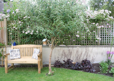 A seat under the shade of the purple Buddleja