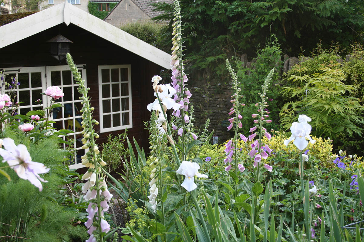 Cottage Garden Planting above the Summer House