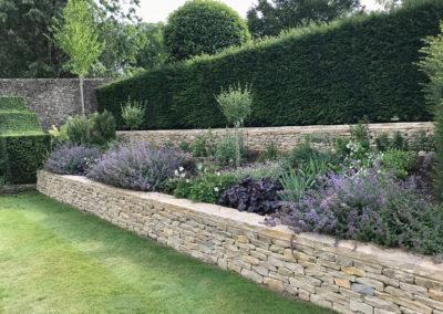 New summer border